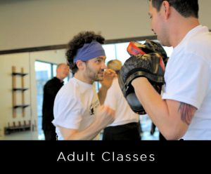 Adult Martial Arts Classes - self defense, cardio workout, discipline, confidence, Kung Fu, Brazilian Jiu Jitsu, Aikido