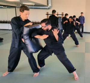 Elbow reverse delivery perspective in martial arts