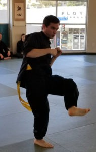 step powerfully goals martial arts