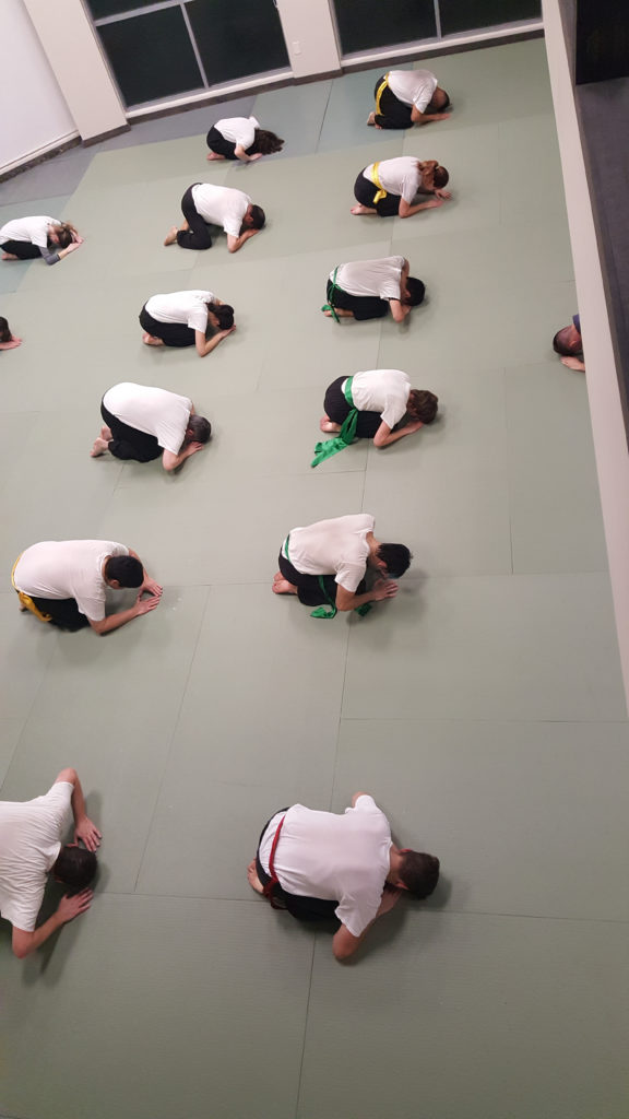 bowing respect in martial arts