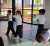 Junior Wushu elbow roundhouse delivery