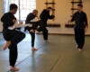 roundhouse knee kick