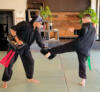 sifus combinations round house kick